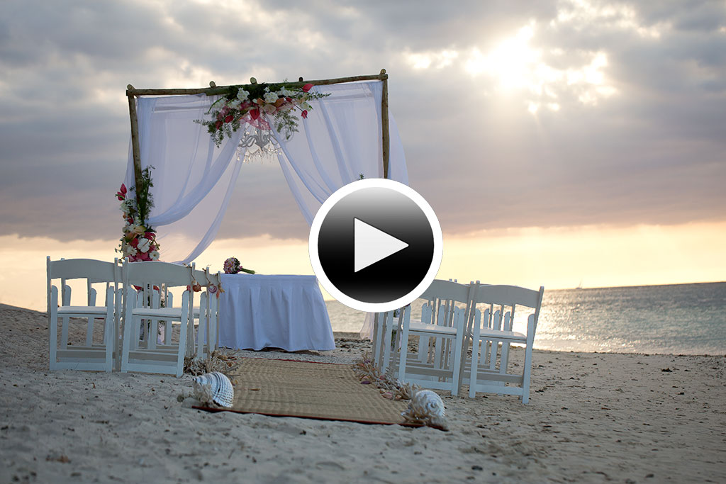 Wedding Reel-image